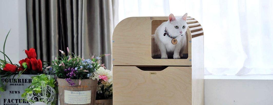 composteerbare kattenbakvulling