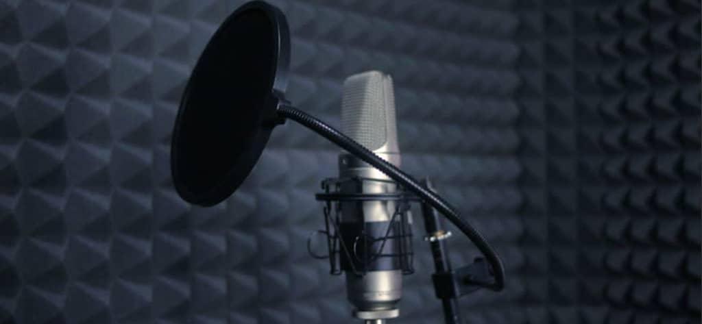 beste microfoon voor zang