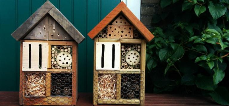 Beste insectenhotel