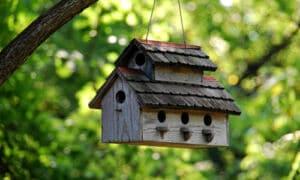 vogelnest voor de tuin hangen