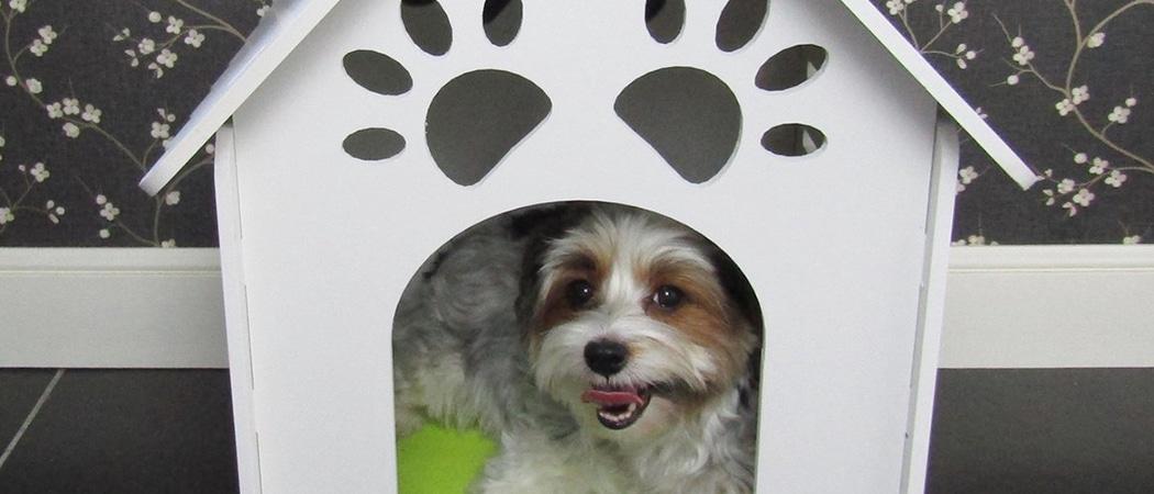 beste hondenhokken Houten_