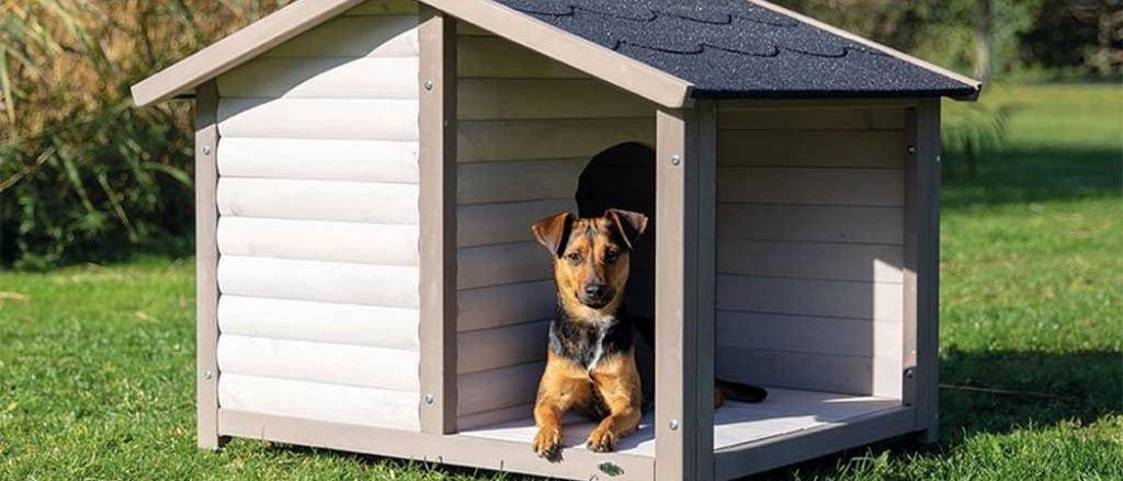 beste hondenhokken van 2021