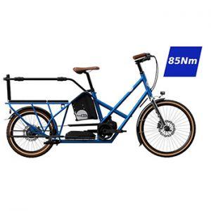 elektrische longtail fiets voor twee of drie kinderen